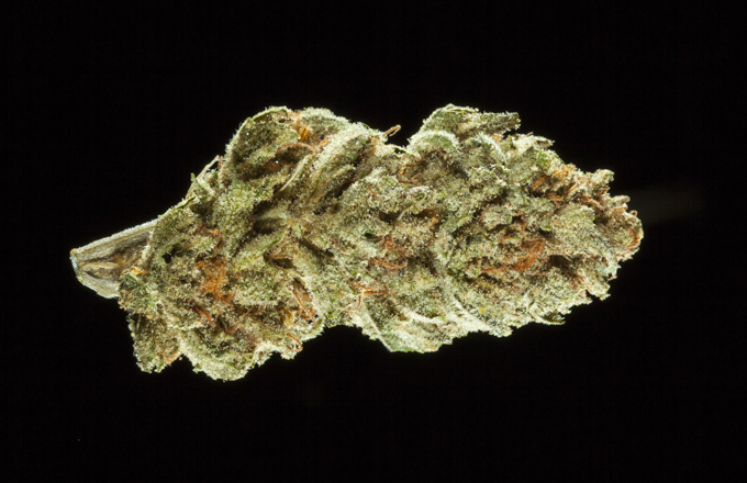 Bubba Kush: 10 Best Cannabis Strains